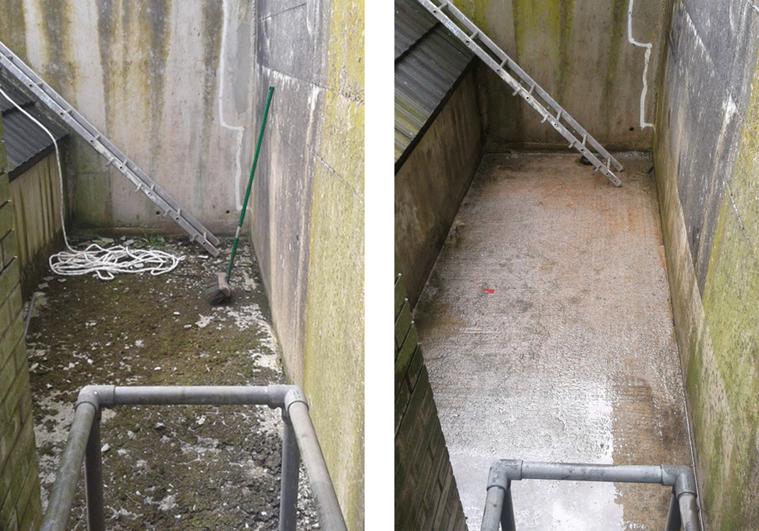 Guano removal Bridgwater